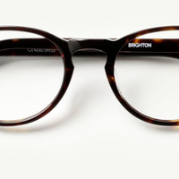 The Women's Brighton Glasses in Havana Tortoise