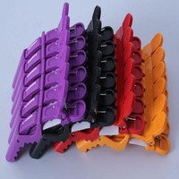 New Design 5 PCS Hair Clips Hairdressing Cutting Salon Hair Styling Tools Women hair accessories 4 colors