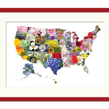 American States Flowers Map Art Print - State Flower - United States Geography Travel Poster - Floral Art - USA State Art Print - Nature Art