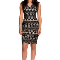 (aky) Deep v neck knee length lace dress
