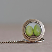 Green Pears Locket, Wearable Art, Jewelry, Bright Green, Photography, Fruit, Two Pears, Locket