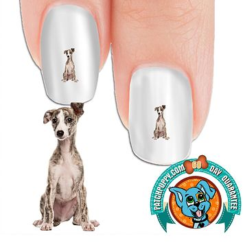 Whippet - You talking to me? Nail Art (NOW 50% MORE FREE)