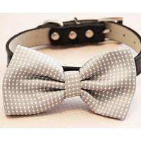 Polka dots Gray Dog bow tie attached to collar, Handmad Pet wedding accessory , Wedding dog collar