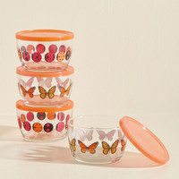 What's the Bug Idea? Container Set