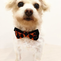 Halloween Double Bow Tie Dog Collar Black and Orange Argyle and Black and White Polka Dot dog collar