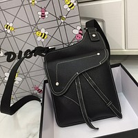 DIOR x AIyx LEATHER SADDLE INCLINED SHOULDER BAG