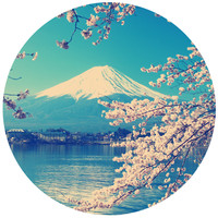 Asian Blossom Circle Wall Decal