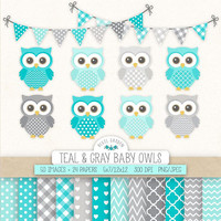 Teal Owl Clipart. Baby Shower, Nursery Clip Art & Digital Paper. Mint, Gray, Blue Background. Cute Banners, Baby Owls in Grey, Teal, Mint.
