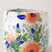 Tuileries Herb Pot by Anthropologie