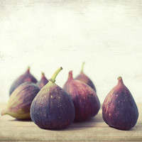 Food still life photography fig photography rustic kitchen decor fruit photo plum mauve autumn purple wall art 'Second Harvest'