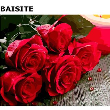 BAISITE DIY PBN Painting Pictures By Numbers Hand Painted Canvas Modern Wall Picture For Living Room Home Decor Wall Art E664