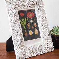 ModCloth French Pals and Petals Frame