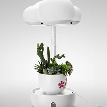 LED Grow Lights for Indoor Plants, Plant Light with Timer and Auto Watering Mode, Intelligent Desk Plant Grow Lamp
