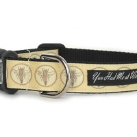 French Bee Dog Collar