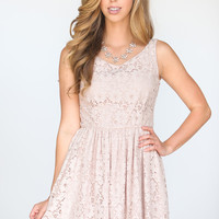 Ruby Pink Lace Fit and Flare Dress