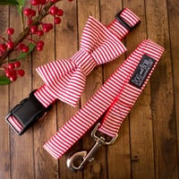 Christmas Candy Cane Dog Collar and Bow Tie