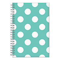 Blue Sky 50percent Recycled Academic WeeklyMonthly Planner 5 x 8 Penelope July 2014 June 2015 by Office Depot