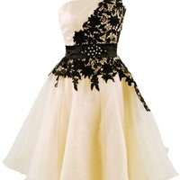 Emma Y Stunning One-shoulder Black Lace Homecoming Prom Gowns
