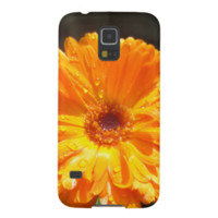 Sunny Calendula Raindrops Galaxy Nexus Cover