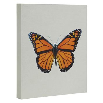 Chelsea Victoria The Queen Butterfly Art Canvas