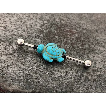 Turquoise Turtle Industrial Barbell