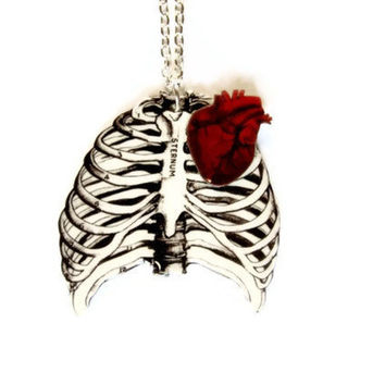 Anatomical Rib Cage Necklace Anatomical Heart Red Anatomy Anatomically Correct Statement Jewelry Medical Illustration