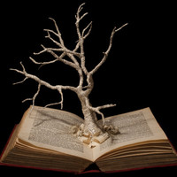 """Book Sculpture """"Unkindled Growth"""" Photographic Print 10"""" x 8"""""""