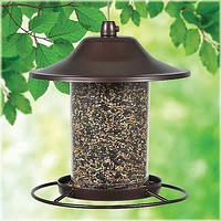 Small Panorama Wild Bird Feeder