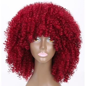 SiZA CURLY AFRO WIG
