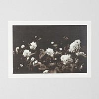 Olivia Joy St. Claire The Way That Light Attaches To A Dream Art Print - Urban Outfitters