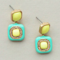 Studded Olympia Earrings