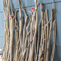 Huge Assortment of 47  Surf Tumbled Driftwood Branches for Beach Theme Wedding , Vase Filler , Natural Coastal Decoration DR47