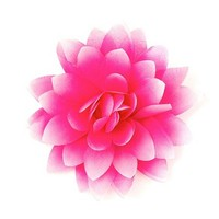 Pink Lotus Flower Hair Clip   Claire's