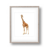 Wild Giraffe Canvas Art Print Painting Poster,  Wall Pictures for Home Decoration, Home Decor FA395-3