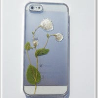 iPhone 5 case Resin with Real Flowers Rhodanthe by Annysworkshop