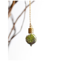 Terrarium Heart- Gold - With Roots