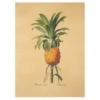 AM Pineapple without Frame - MC519 - All Wall Art - Wall Art & Coverings - Decor