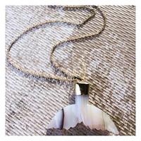 Gemstone Agate Shark Tail Pendant Necklace