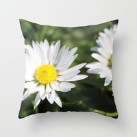wild white daisy flowers. floral photography. Throw Pillow by NatureMatters