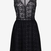 Glazed Lace Dress - Sale - French Connection Usa