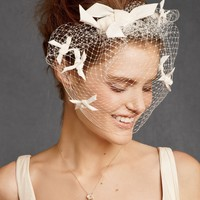 Etoile Birdcage Veil in  SHOP Shoes  Accessories Veils at BHLDN