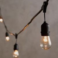 Cafe String Lights by Anthropologie in Clear Size: One Size Garden