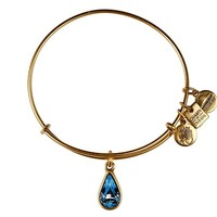 Alex and Ani Bangle Bar Living Water Charm Expandable Bracelet