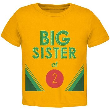 Crayon Big Sister of 2 Toddler T Shirt