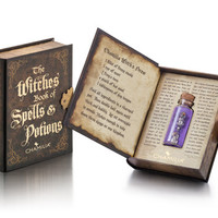 Chamilia The Witches Book of Spells and Potions