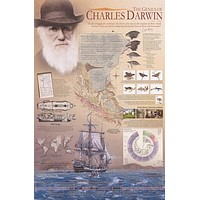 Charles Darwin Theory of Evolution Poster 24x36