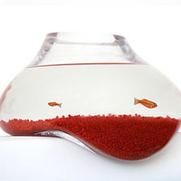 Bubble Tank Fish Bowl