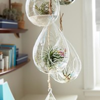 Hanging Glass Vessels