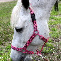 Hot Pink Cheetah Print Horse Halter - Pick Your Size
