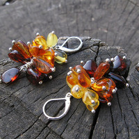 Handmade Amber Earrings, Natural Baltic Fossil jewelry, dangling multi color cluster earrings, brown cognac yellow, butterscotch, fall trend
